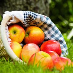 les pommes caramelis es aux pices botanic. Black Bedroom Furniture Sets. Home Design Ideas