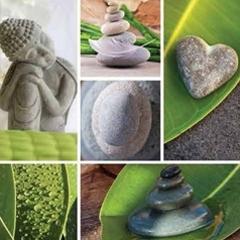 BlocConseil_quotidien-et-naturopathie-un-esprit-sain-dans-un-corps-sain