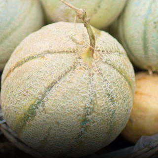 BlocConseil_recette-soupe-de-melon