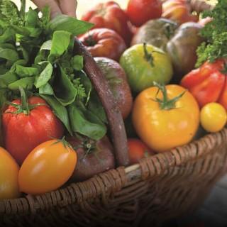 BlocConseil_salade-de-tomates-anciennes