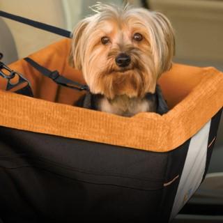 BlocConseil_voyager-avec-mon-animal
