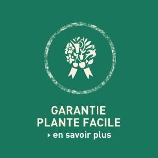 BlocConseil_garanties_plante-facile
