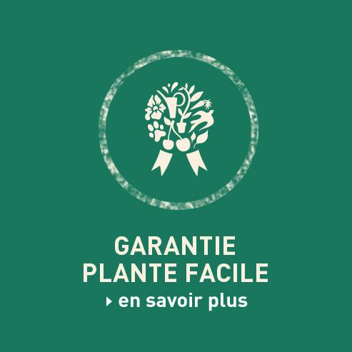 BlocConseil_garantie-plante-facile-un-an