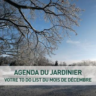 BlocConseil_agenda-du-jardinier