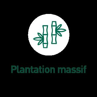BlocConseil_aide-au-choix-bambous_plantation-en-massif
