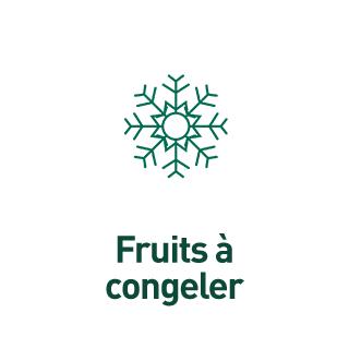 BlocConseil_aide-au-choix-groseilliers_congelation