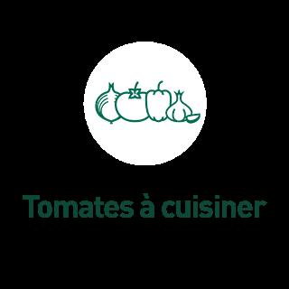 BlocConseil_aide-au-choix-tomates-bio_tomates-a-cuisiner