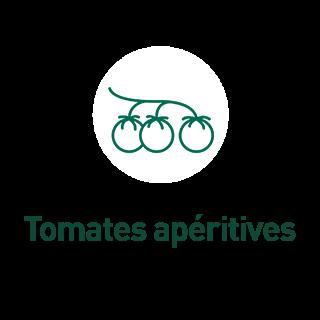 BlocConseil_aide-au-choix-tomates-bio_tomates-aperitives