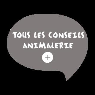 BlocConseil_tous-les-conseils-animalerie