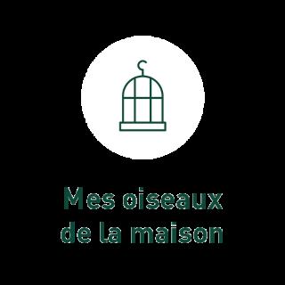 BlocConseil_grain-de-vie_pour-mes-oiseaux-de-la-maison