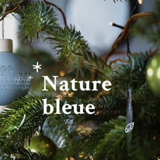 BlocConseil_noel-ambiance-nature-bleue