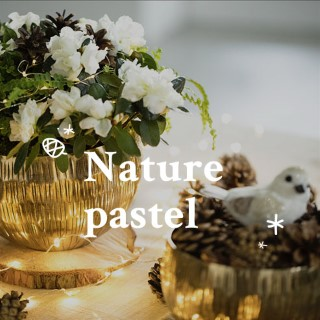 BlocConseil_noel-ambiance-nature-pastel