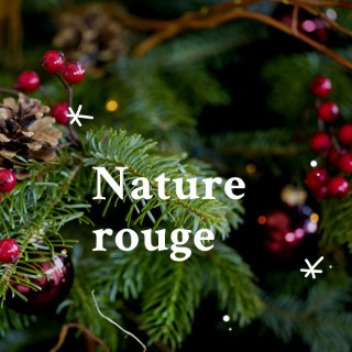 BlocConseil_noel-ambiance-nature-rouge