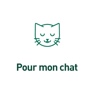 BlocConseil_sa-vraie-nature_chat