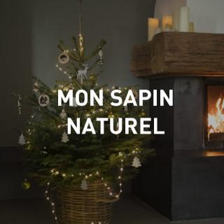 Sapin De Noel Contemporain sapins de noël : botanic®, nos sapins en pot ou sur bûche pour noël