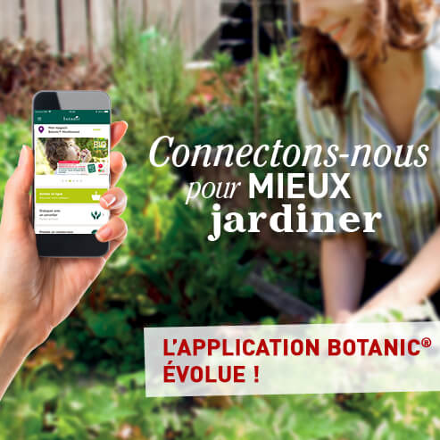 BlocConseil_application-botanic