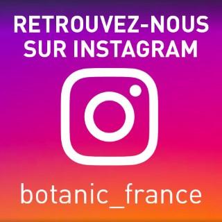 BlocConseil_reseaux-sociaux_instagram