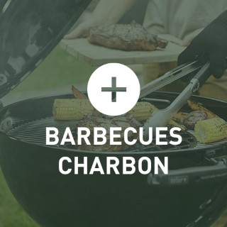 BlocConseil_categorie_barbecues-charbon