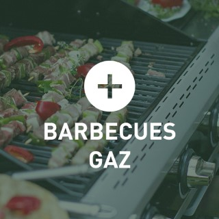 BlocConseil_categorie_barbecues-gaz