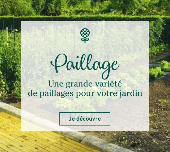 Edito_categorie_paillages-potager