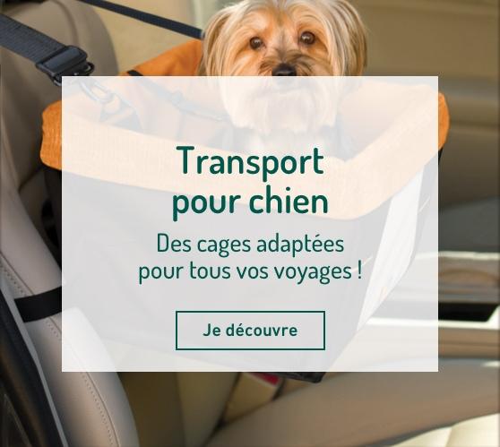 Edito_categorie_transport-pour-chien