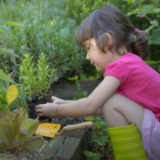 BlocConseil_graines-de-jardiniers