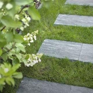 BlocConseil_un-jardin-mineral