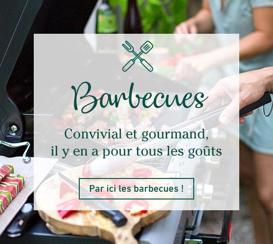 Edito_barbecue-et-compagnie