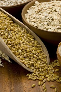Graines germées: variez les plaisirs
