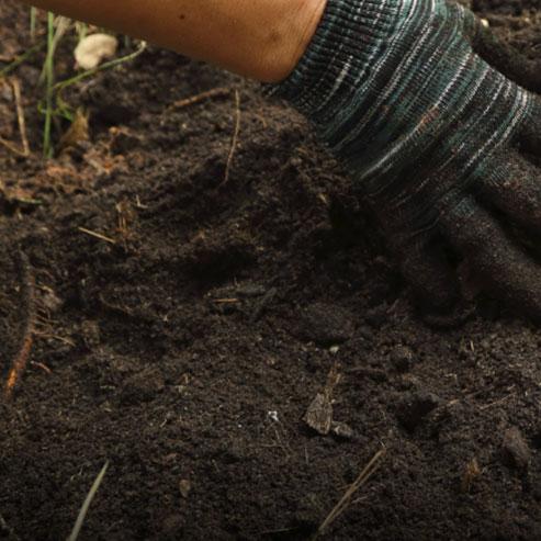 BlocConseil_engrais-naturels-botanic-comment-nourrir-la-terre