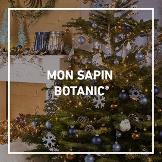 BlocConseil_sapins-de-noel_garantiefraicheur