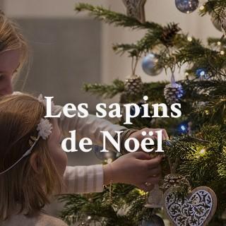 BlocConseil_sapins-de-noel