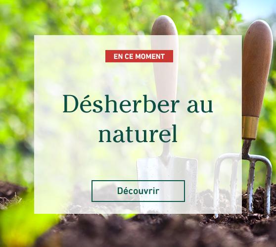 Edito_desherbage-naturel-jardinons-ecologique