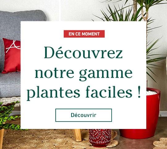 Edito_garantie-plante-facile-un-an_2019