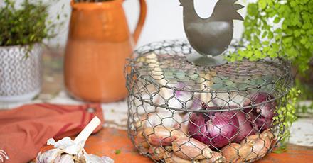 herbes-et-condiments-mettez-du-pep-s-dans-vos-plats_30