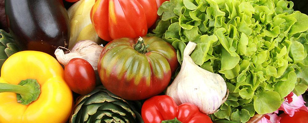 recolter-et-conserver-ses-legumes_50