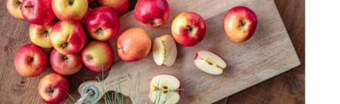 tiramisu-pommes-caramelisees_30