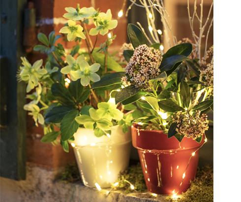 Des rebords de fenêtre à l'esprit de Noël, une manière de partager votre esprit créatif