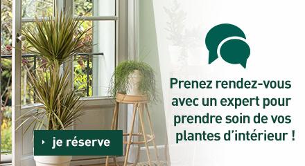Edito_rendez-vous-personnalises_maison