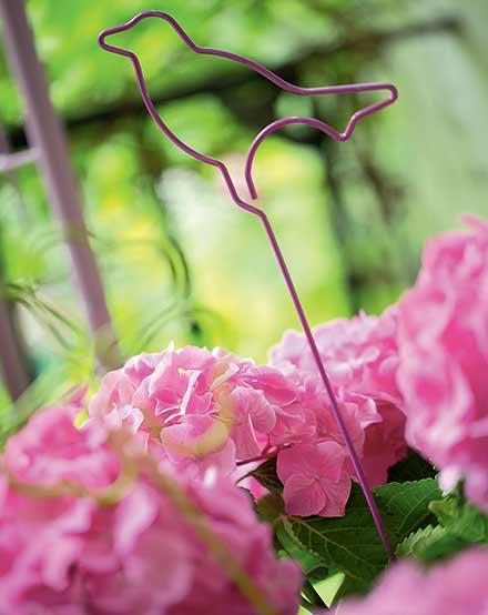 du-japon-a-nos-jardins-l-hortensia-devoile-ses-secrets-de-beaute_3