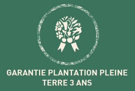 Edito_garanties_plantation-pleine-terre