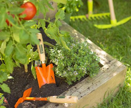 graines-de-jardiniers_2