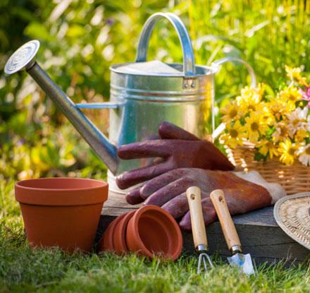 graines-de-jardiniers_3