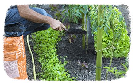 L'agenda du jardinier