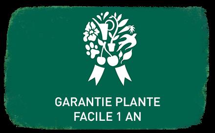 Garantie plante facile 1 an