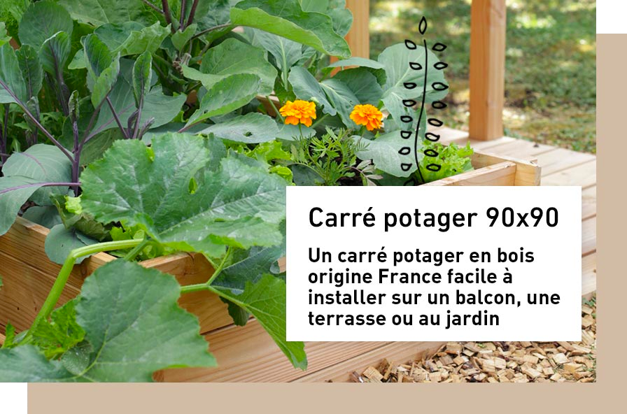 carre-potager_1