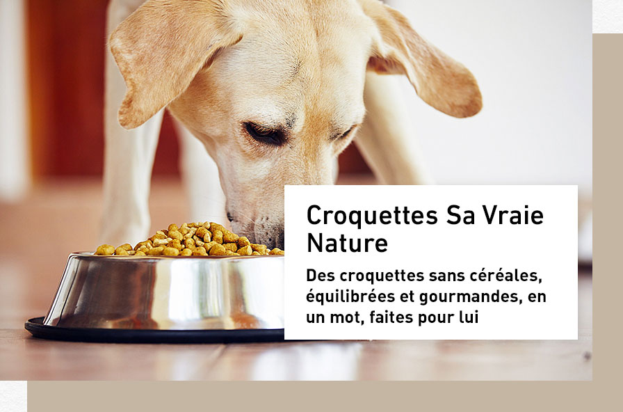 croquettes-chien-sa-vraie-nature_1