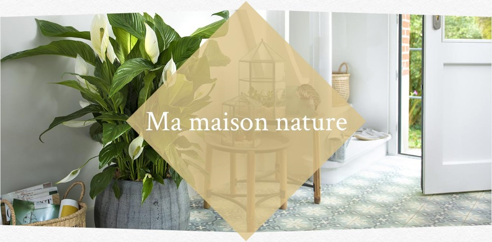 inspirations-printemps-nature-pastel_20