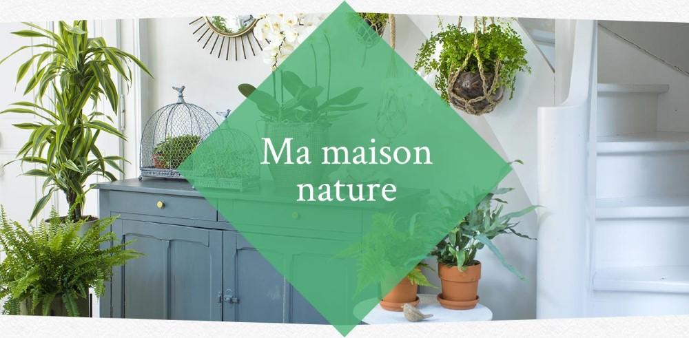 inspirations-printemps-nature-verte_40