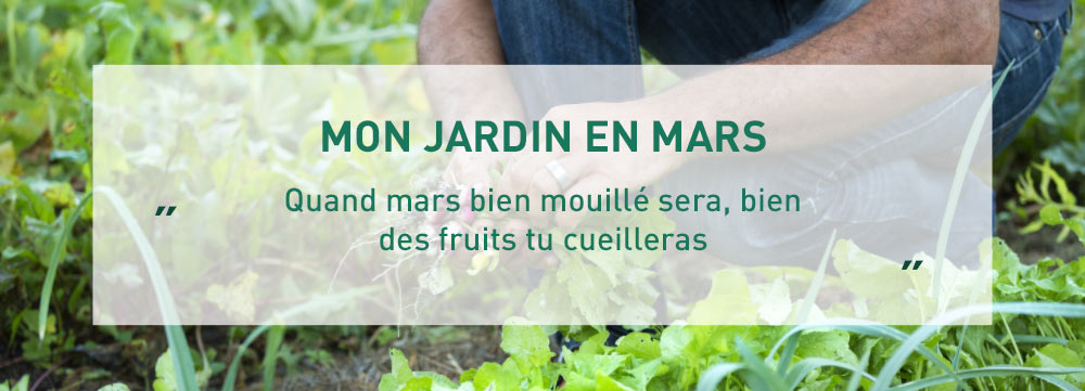 agenda-du-jardinier_4
